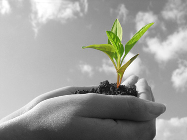 Types of Lead Nurturing That Helps Business Grow